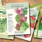 Back to the Garden: Early Spring Projects to Start Today