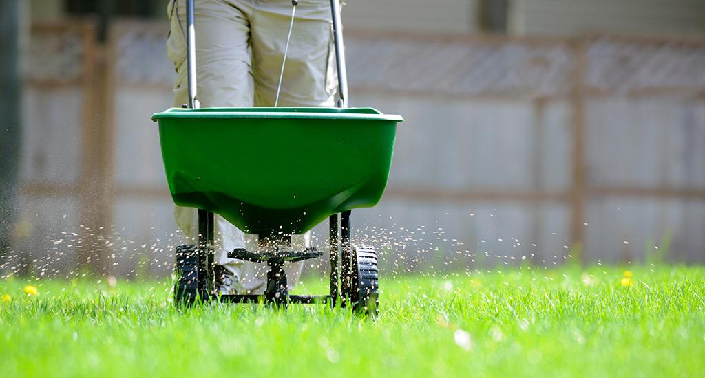 FertilizingLawn